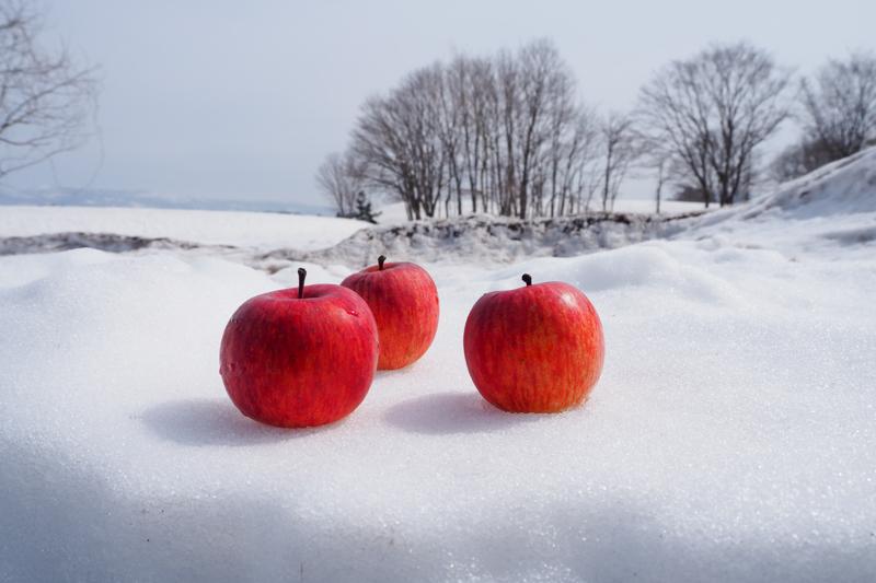 温井の雪を活用して保管・熟成した「雪中りんご」